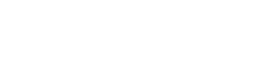 DT Logo white large